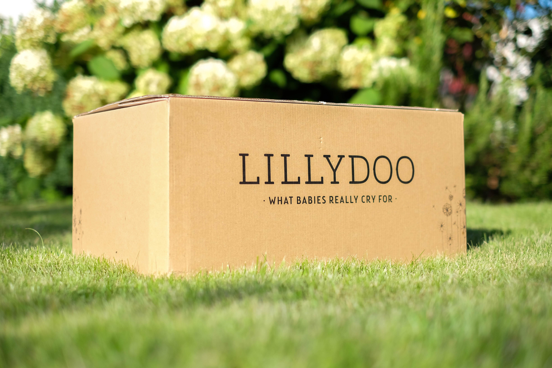 Da steht es. Das viel versprechende Windelpaket von Lillydoo. Kommt schön daher. Mit Pusteblumen außen auf dem Karton.