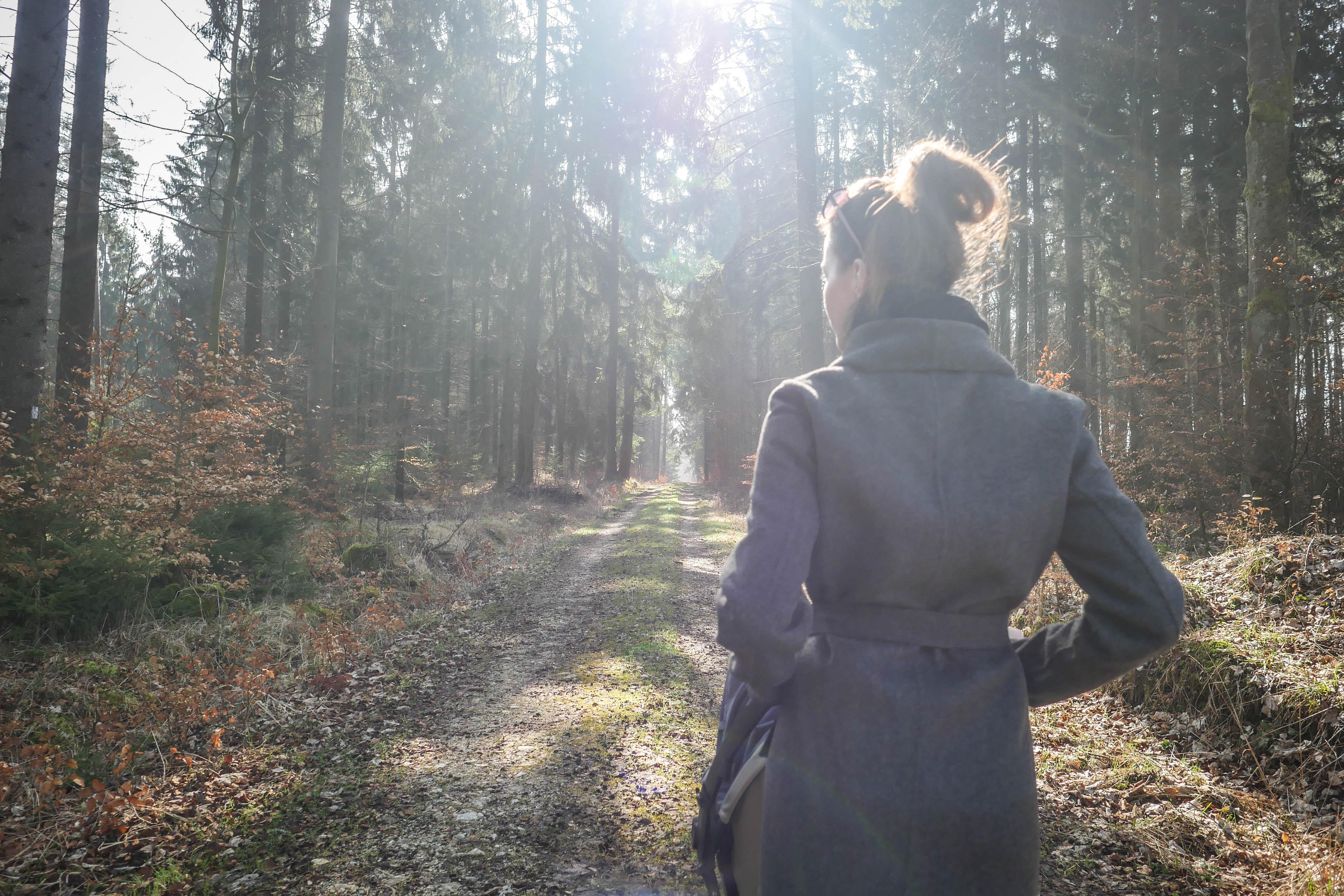 Quinny Zapp von hinten Wald