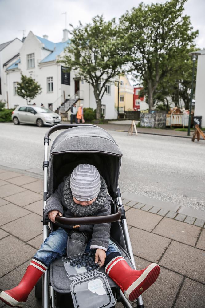 Reykjavik Innenstadt city snack